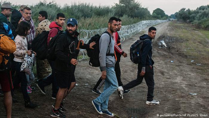پناهندگی اتحادیه اروپا